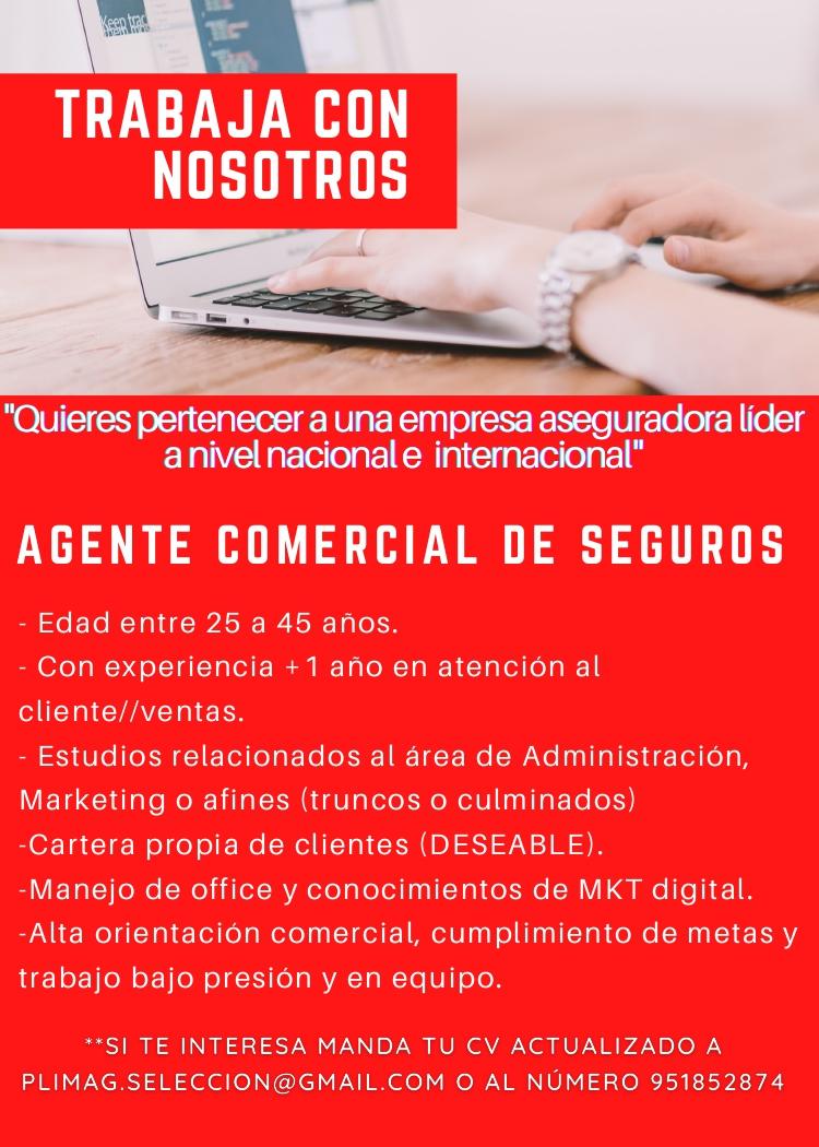 AGENTE COMERCIAL DE SEGUROS